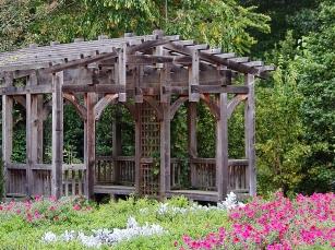 NC-Arboretum18