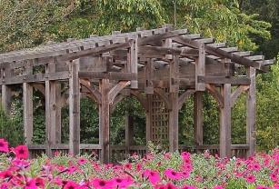 NC-Arboretum19