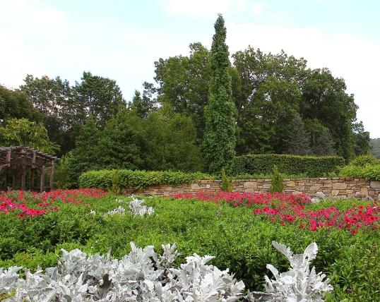 NC-Arboretum20